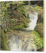 Woodland Waterfall Wood Print by Victoria Hillman