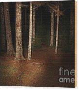 Woods At Night Wood Print