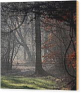 Woods - Dirt Road Photo - The Quiet Place Wood Print