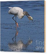 Woodstork Catches Fish Wood Print