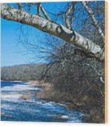 Wordens Pond Winter Wood Print