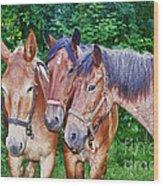 Work Horse Trio Wood Print
