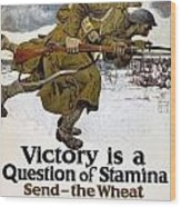 World War I: Poster, 1917 Wood Print