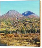 Wrangell Mountains Colors Wood Print