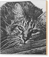 Wyatt Wood Print