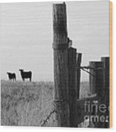 Wyoming Fence Line Wood Print