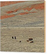 Wyoming Red Cliffs And Buffalo Wood Print