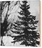 X-mas Tree Wood Print