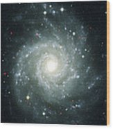 X-ray Sources In M74, Chandra Image Wood Print