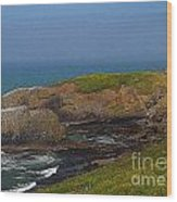 Yaquina Head Lighthouse And Bay - Posterized Wood Print
