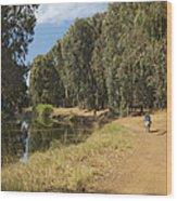 Yarkon Park  And River Yarkon Wood Print