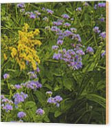 Yellow And Violet Flowers Wood Print