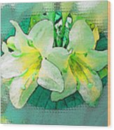 Yellow Aqua Weigela Art Wood Print