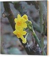 Yellow Beam Wood Print