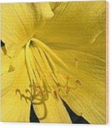 Yellow Beams Wood Print