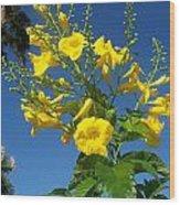 Yellow Bells Wood Print