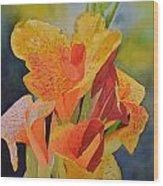 Yellow Canna Wood Print by Cynthia Sexton