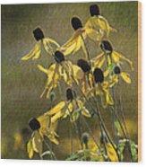 Yellow Coneflowers Wood Print
