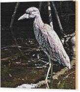Yellow Crowned Night Heron II Wood Print