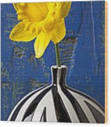 Yellow Daffodil In Striped Vase Wood Print