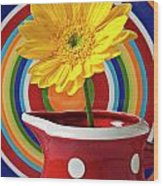 Yellow Daisy In Red Pitcher Wood Print