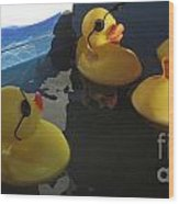 Yellow Rubber Duckies  Wood Print