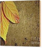 Yellow Fall Leafs Wood Print
