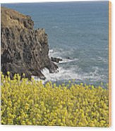 Yellow Flowers On The Northern California Coast Wood Print