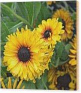 Yellow Garden Wood Print