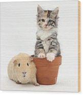 Yellow Guinea Pig And Kitten Wood Print