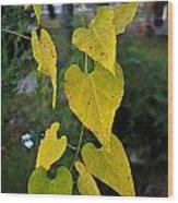 Yellow Heart Leaves Photoart II Wood Print