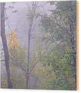 Yellow In The Fog Wood Print
