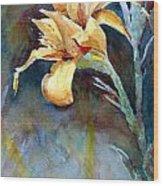 Yellow Iris Wood Print by Alan Smith