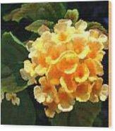 Yellow Lantana Wood Print