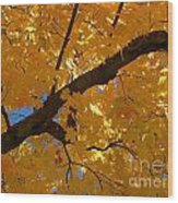 Yellow Maple Branch Wood Print