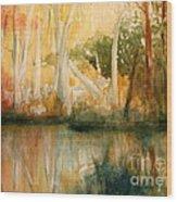 Yellow Medicine Creek 2 Wood Print