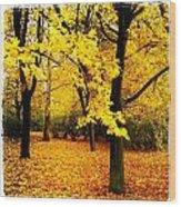 Yellow Park Wood Print