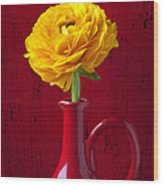 Yellow Ranunculus In Red Pitcher Wood Print