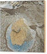 Yellow Rock And Pool  Meade Glacier Wood Print