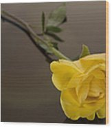 Yellow Rose Of Friendship Wood Print