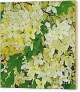 Yellow Shower Tree - 1 Wood Print