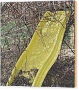 Yellow Slide Wood Print