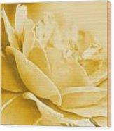 Yellow Tone Rose  Wood Print