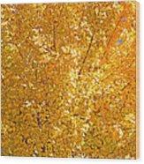 Yellow Tree Leaves Wood Print