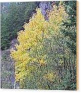 Yellow Trees Wood Print