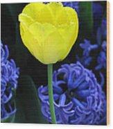 Yellow Tulip And Hyacinth Wood Print