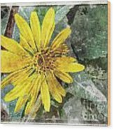 Yellow Wildflower Photoart Wood Print