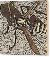 Yellowjacket Wood Print