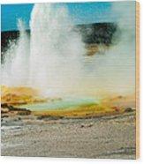 Yellowstone Geysers Wood Print