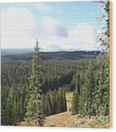 Yellowstone High Elevation Forest Wood Print